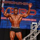 Elvernie  McGhee - IFBB Wings of Strength Tampa  Pro 2016 - #1