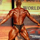 Stefan  Havlik - IFBB Wings of Strength Tampa  Pro 2015 - #1