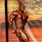 Al  Auguste - IFBB Wings of Strength Tampa  Pro 2015 - #1