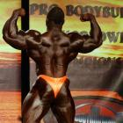 Akim  Williams - IFBB Wings of Strength Tampa  Pro 2015 - #1