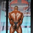 Essa  Obaid - IFBB Wings of Strength Tampa  Pro 2013 - #1
